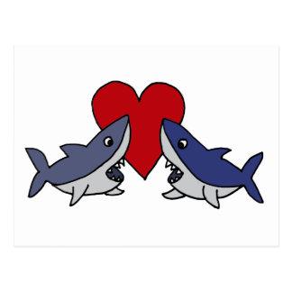 Silly Sharks in Love Art Postcard