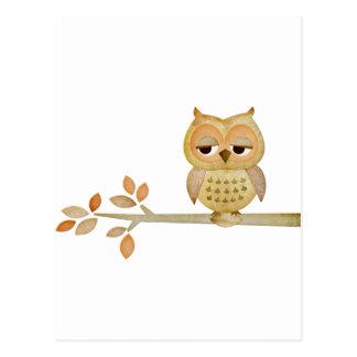 Sleepy Owl in Tree Postcard