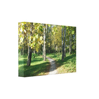 Small Path to Paradise Canvas Stretched Canvas Prints