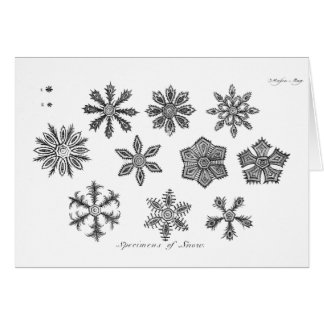 Snowflakes -- 1791 note card