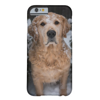 Snowy Joey Barely There iPhone 6 Case