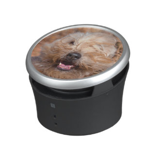 Soft Coated Wheaten Terrier portrait Speaker