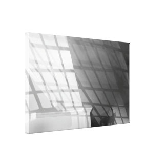 Solar cat gallery wrapped canvas