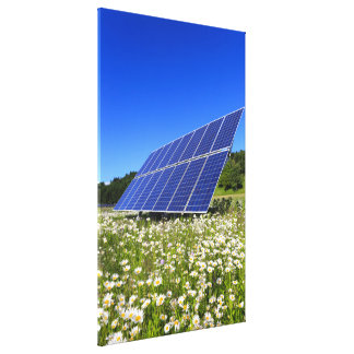 Solar Panels and green meadow Canvas Prints