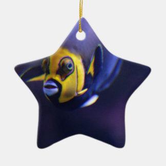 spectacled angelfish ceramic star decoration