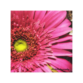 Spring Season Stretched Canvas Print
