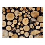 Stack of tree logs postcard