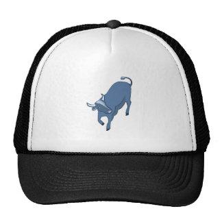 Steer Cap