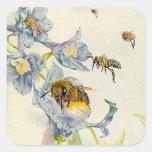 STICKERS Organic HONEY beekeeper bees flowers