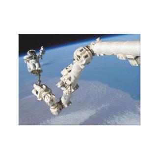STS-114 Steve Robinson on Canadarm2 Canvas Print