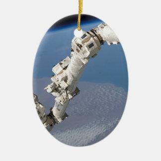 STS-114_Steve_Robinson_on_Canadarm2.jpg Ceramic Oval Decoration