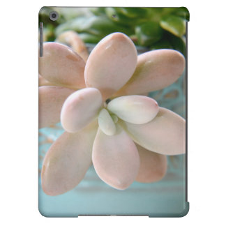 Succulent Sedum Pink Jelly Bean Plant iPad Air Case