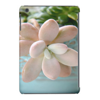 Succulent Sedum Pink Jelly Bean Plant iPad Mini Cover