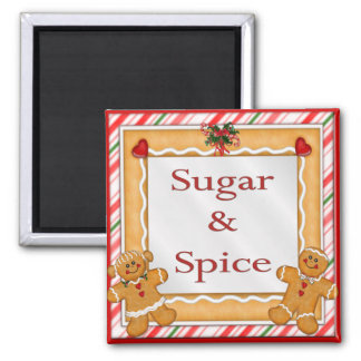 Sugar and Spice Square Magnet