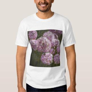 Summer bees 2014 t shirts