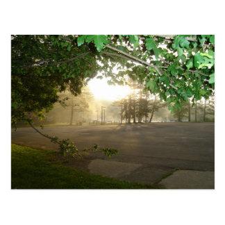 Summer Morning Sunrise Postcard