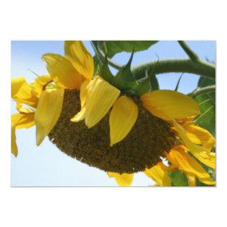 Sunflower invite