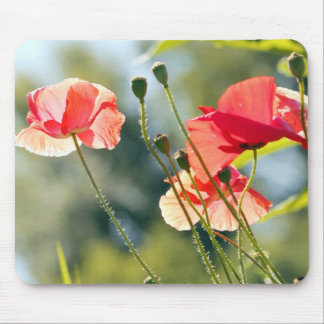Sunny day poppies mouse pad
