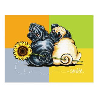 Sunny Pugs Postcard