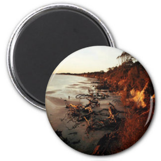 Sunset on Driftwood 6 Cm Round Magnet