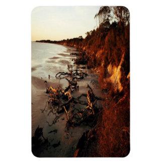 Sunset on Driftwood Rectangular Photo Magnet