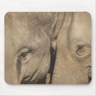 Surin Elephant Round Up, Surin Elephant Show Mouse Pad