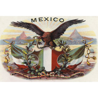 """Mexican Flag & Eagle Poster Print"""