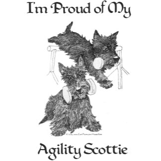 Agility Scots