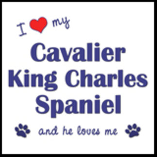 I Love My Cavalier King Charles (Male Dog)