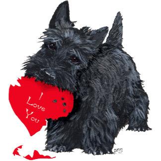 14 Valentines
