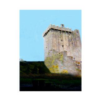 1999 Ireland Blarney Castle transp jGibney The MUS