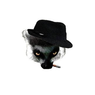 Meeri the Meerkat