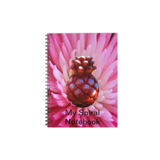 All Templates All Spiral jGibney Notebook The MUSE