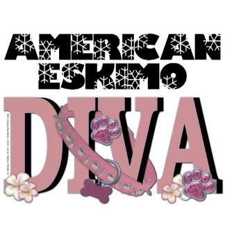American Eskimo DIVA