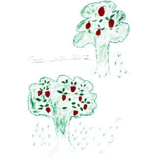 Trees with fruits