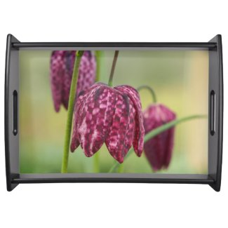 Pink fritillary flower serving tray