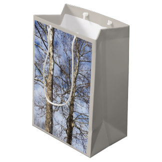 Sycamore Trees in a Winter Sky --- Medium Gift Bag
