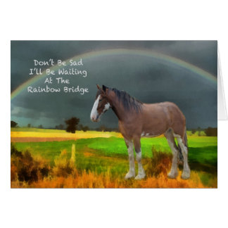 Sympathy for loss of pet horse greeting card