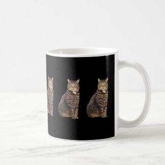 Tabby cat on black background basic white mug