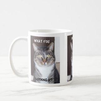 Tabby Cat What you, Looking Coffee Mug