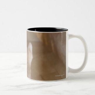 Tabby Two-Tone Mug