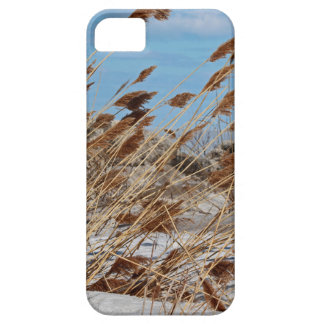 Tame a Wild Wind-horizontal Case For The iPhone 5