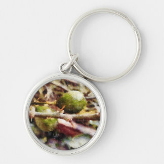 Tender raw lemons Silver-Colored round key ring
