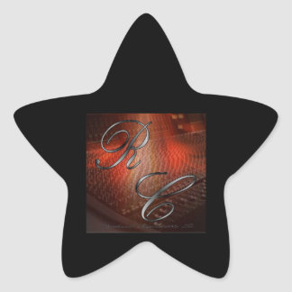 The Artist Logo Star Stickers