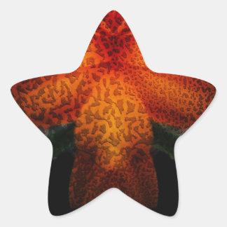 The Artist Star Sticker