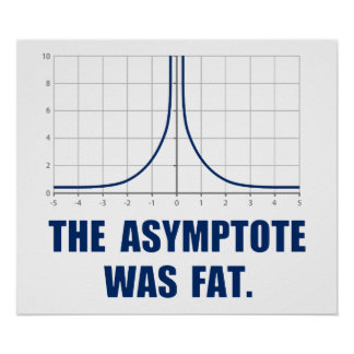 The Asymptote was Fat Poster