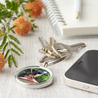 The Cutest Animal, Wildlife, Environment ♥ Silver-Colored Round Key Ring