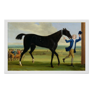 The Duke of Rutland's 'Bonny Black', c.1720 (oil o Poster