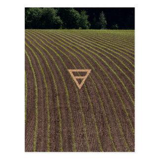 The Element Earth Symbol Postcard