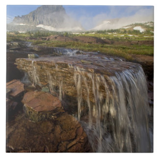 The Hanging Gardens at Logan Pass in Glacier Large Square Tile